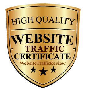 website traffic review