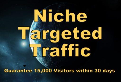 buy targeted niche website visitors
